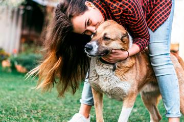 ¿Qué hago para tener una mascota saludable?