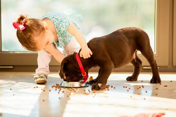 ¿Qué hacer para que nuestros cachorros tengan un crecimiento ideal?