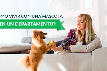 ¿Cómo vivir con una mascota en un departamento?